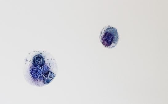 LUKAS MLETZKO 'A.O.T.', watercolour on inkjet–photo paper, 29,7cm x 21cm, 2017